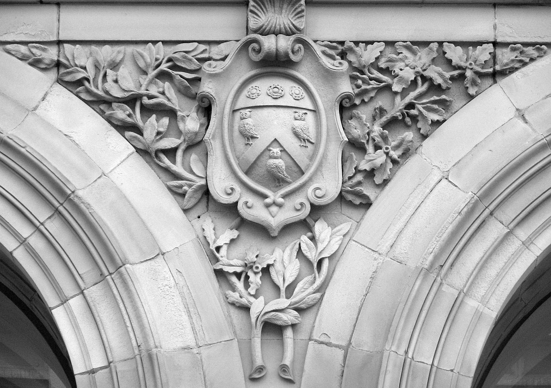 Retro owls mushrooms patterns u classic carving patterns